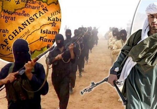 داعش مسئولیت کشته شدن فرمانده طالبان را به عهده گرفت