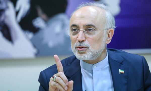 علی اکبر صالحی: دست ایران در مذاکرات وین از نظر فنی بسیار پر است